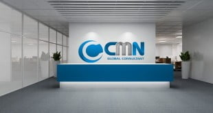 CMN-Global-Consultant